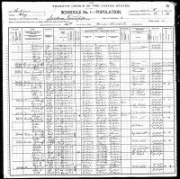 1900 Census: William Henry Senter and Mary Emaline Deal